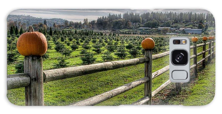 Pumpkin Galaxy S8 Case featuring the photograph Springhetti Road Pumpkins by Spencer McDonald