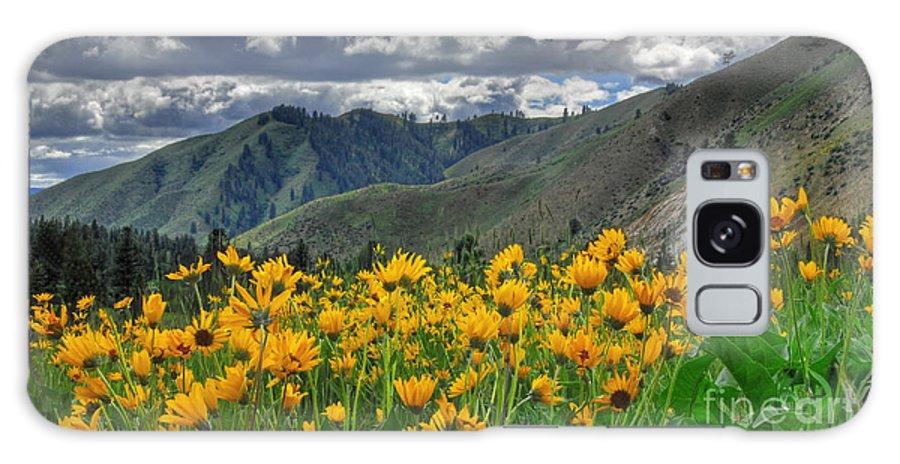 Garden Valley Galaxy S8 Case featuring the photograph Springtime At Gallagher by Sam Rosen