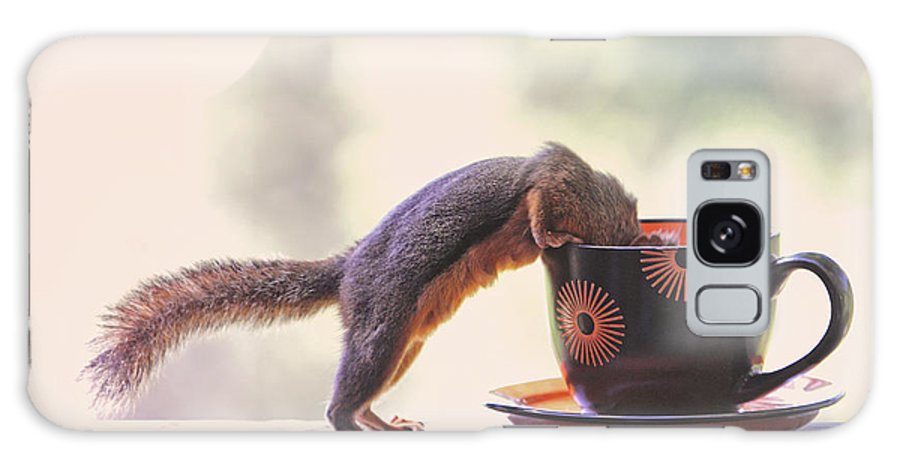 Squirrels Galaxy S8 Case featuring the photograph Squirrel And Coffee by Peggy Collins