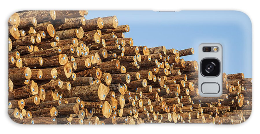 Construction Material Galaxy S8 Case featuring the photograph Stacks Of Logs by Bryan Mullennix