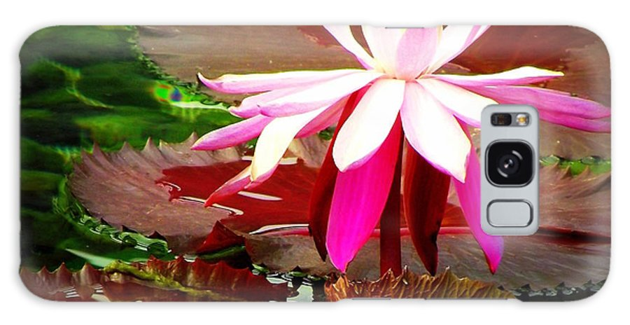 Water Lily Galaxy S8 Case featuring the photograph Standing Beauty by Shawna Gibson