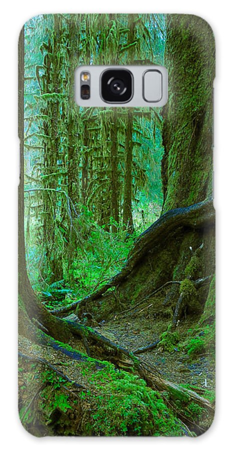 Tree Galaxy S8 Case featuring the photograph Standing Tall by Jim Southwell