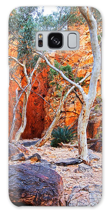 Stanley Chasm Outback Central Australia Landscape Northern Territory Australian West Mcdonnell Ranges Galaxy S8 Case featuring the photograph Stanley Chasm by Bill Robinson