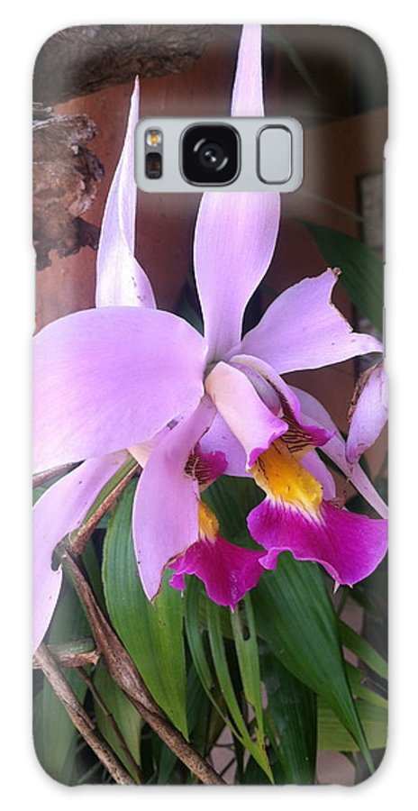 Flowers Galaxy S8 Case featuring the photograph Star Orchid by William Hallett