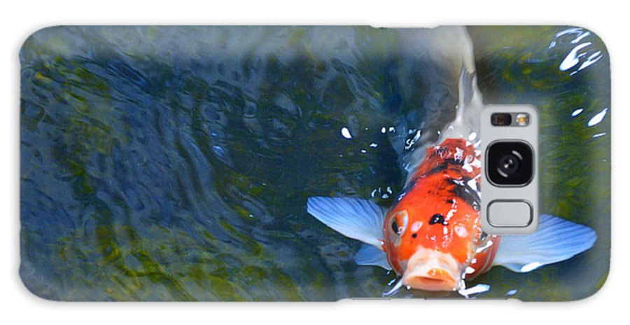 Koi Galaxy S8 Case featuring the photograph Stare Down With A Koi by Wendy Raatz Photography