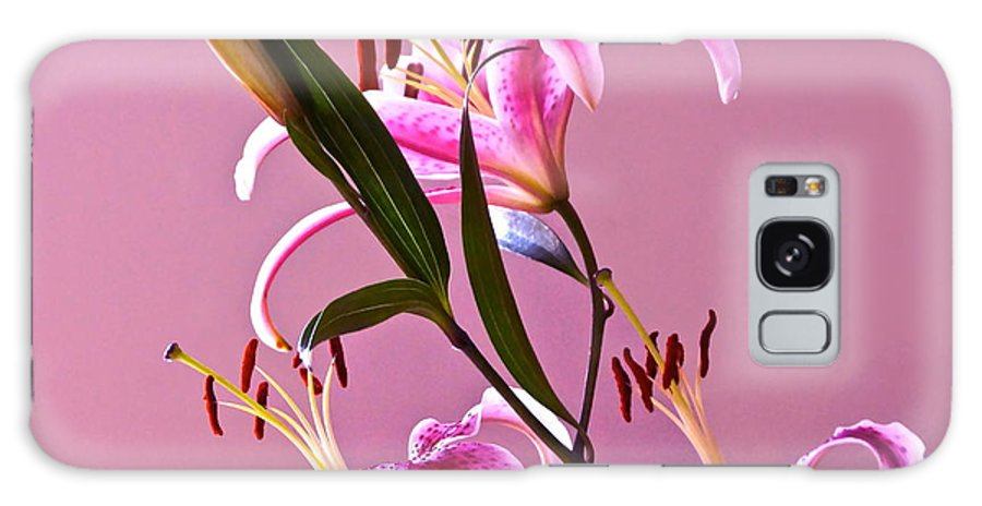 Stargazer Lilies Galaxy S8 Case featuring the photograph Stargazer Lilies Square Frame by Byron Varvarigos
