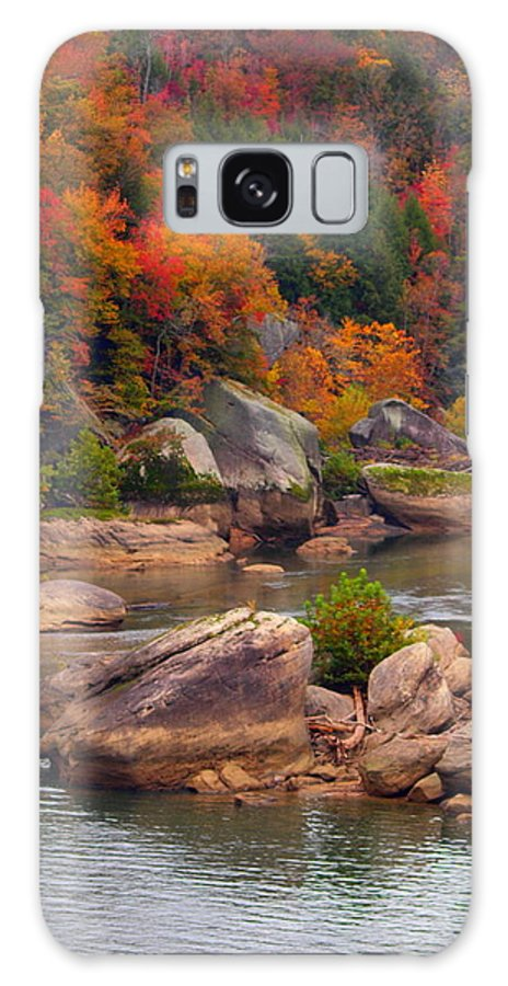 Trees Galaxy S8 Case featuring the photograph Sticks And Stones by Bena Travis