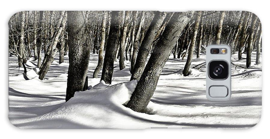 Winter Galaxy S8 Case featuring the photograph Stillness by Danny Vaughn