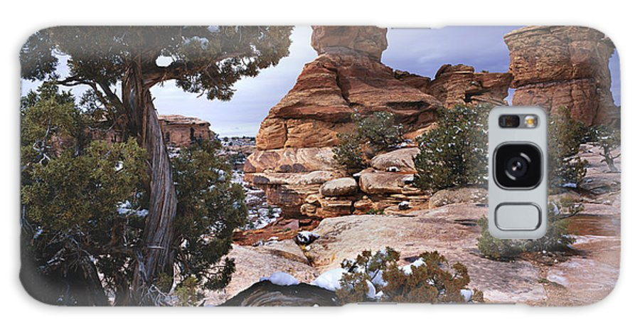 Utah Galaxy S8 Case featuring the photograph Stone Face by Tom Daniel