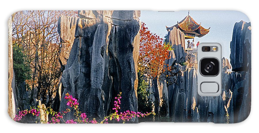 China Galaxy S8 Case featuring the photograph Stone Forest by Dennis Cox