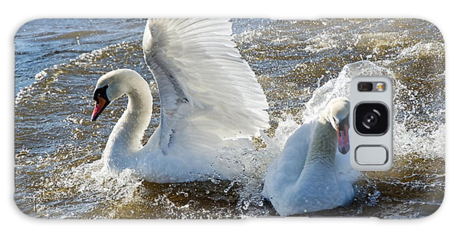 Mute Swans Galaxy S8 Case featuring the photograph Stop Splashing Me by Susie Peek