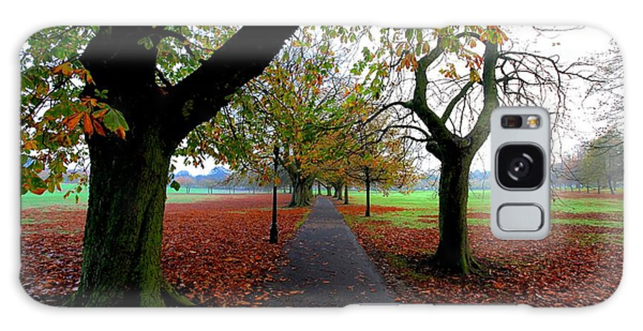 Autumn Galaxy S8 Case featuring the photograph Stray Beauty In Autumn No 2 by Dwight Pinkley