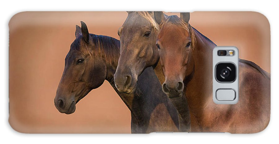 Horse Galaxy S8 Case featuring the photograph Strength In Numbers by Dawn MacGibbon