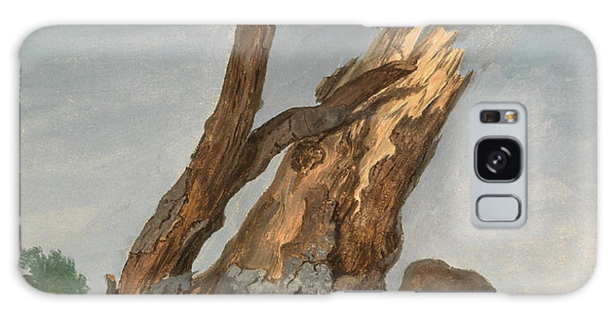 Draftsman Galaxy S8 Case featuring the painting Study Of Rocks And Branches, George Augustus Wallis by Litz Collection