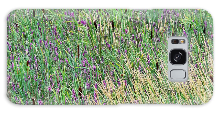 Summer Galaxy S8 Case featuring the photograph Summer Marsh by Alan L Graham