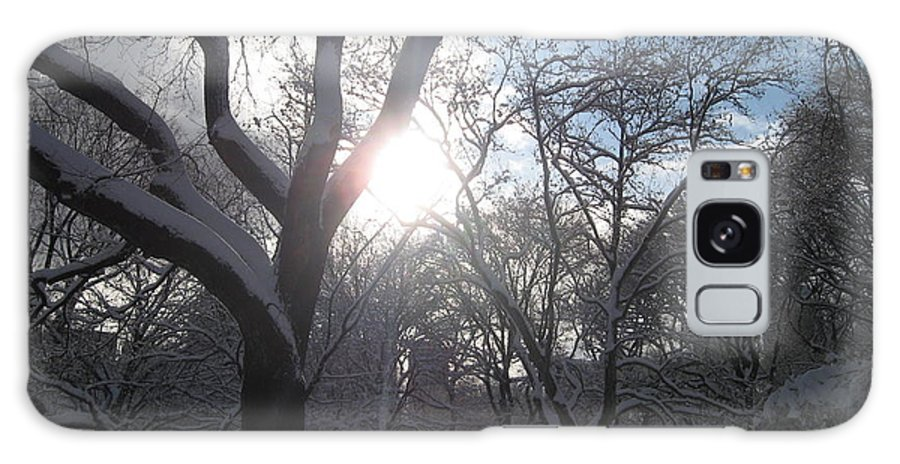 Central Park Galaxy S8 Case featuring the photograph Sun Over The Park by Catie Canetti