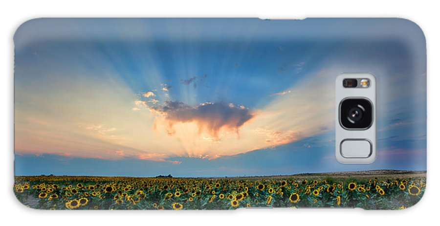 Flowers Galaxy S8 Case featuring the photograph Sunflower Field At Sunset by Jim Garrison