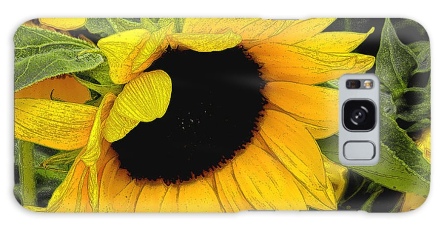 Sunflower Galaxy S8 Case featuring the photograph Sunflower by James C Thomas