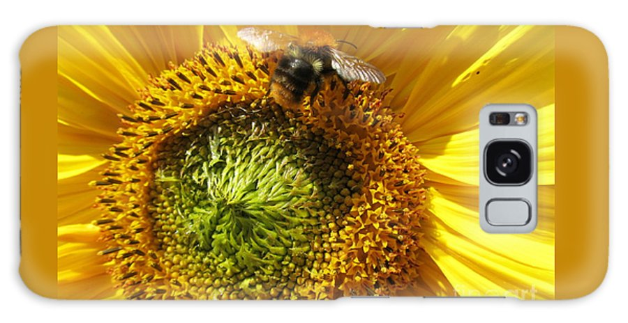 Sunflower Galaxy S8 Case featuring the photograph Sunflower With Bee by Jeepee Aero