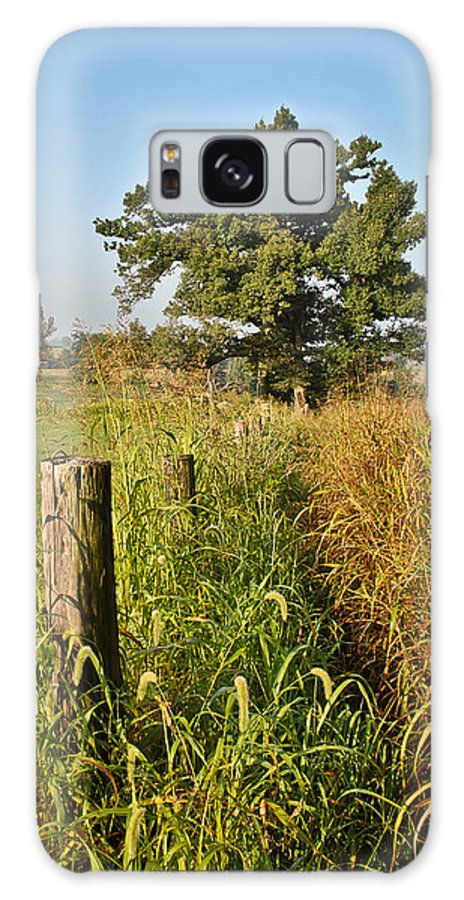 Sunlit Fence Post In Weeds Galaxy S8 Case featuring the photograph Sunlit Fence Posts In Weeds by Greg Jackson