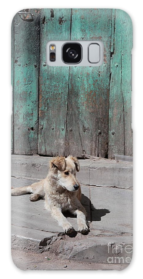 Dog Galaxy S8 Case featuring the photograph Dog Enjoying A Sunny Doorstep by James Brunker