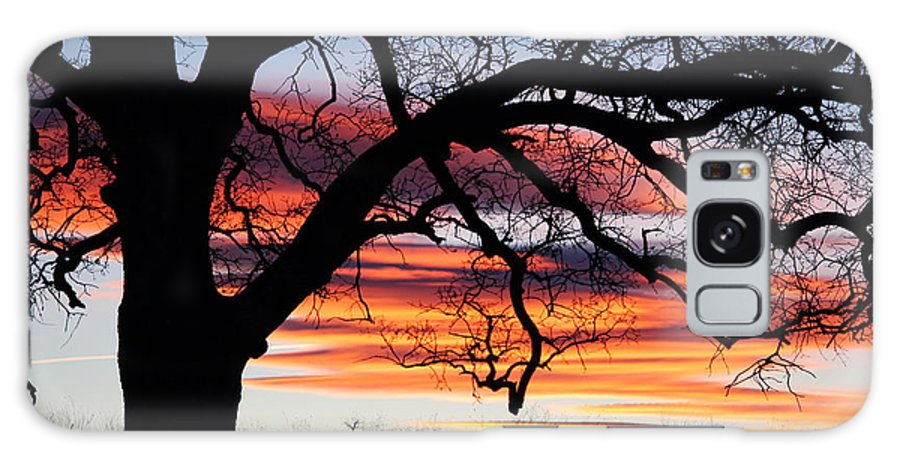 Chico Galaxy S8 Case featuring the photograph Sunrise On The Ridge by Robert Woodward