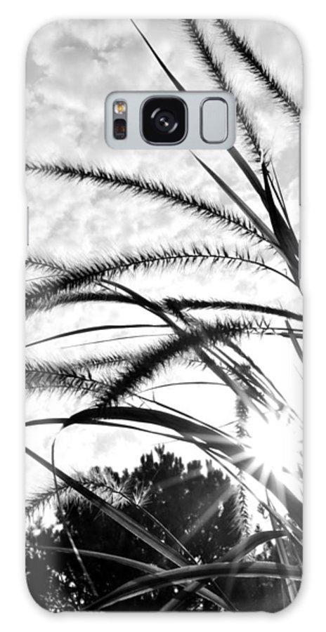 Sun Galaxy S8 Case featuring the photograph Sunrise Sunburst by Kelly Nowak
