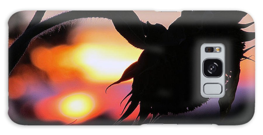 Suns Galaxy S8 Case featuring the photograph Sunset 365 19 by Tina M Wenger