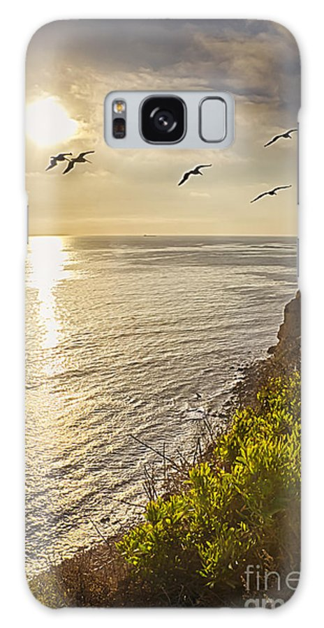 Sunset Galaxy S8 Case featuring the photograph Sunset Flight by David Doucot