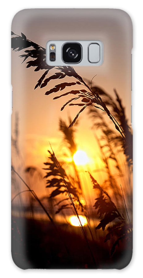 Dunes Galaxy S8 Case featuring the photograph Sunset Seaoats by Mic Smith