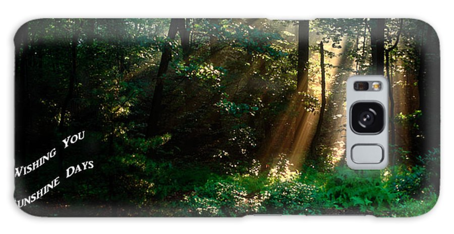 Sunbeams Radiating Through Trees Galaxy S8 Case featuring the photograph Sunshine Days Greeting by Sally Weigand