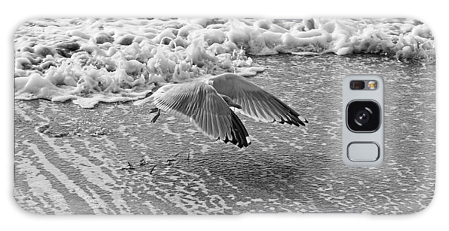 Maine Galaxy S8 Case featuring the photograph Surf And Wings by David Rucker