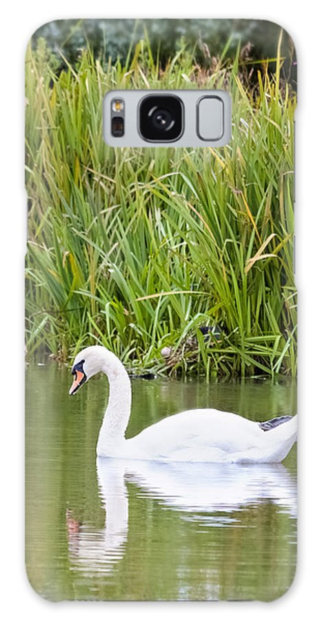 Christinesmart Galaxy S8 Case featuring the photograph Swan Lake by Christine Smart