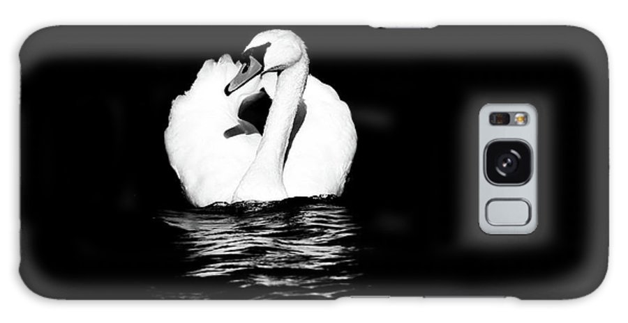 Swan Galaxy S8 Case featuring the photograph Swan White On Black by Karol Livote