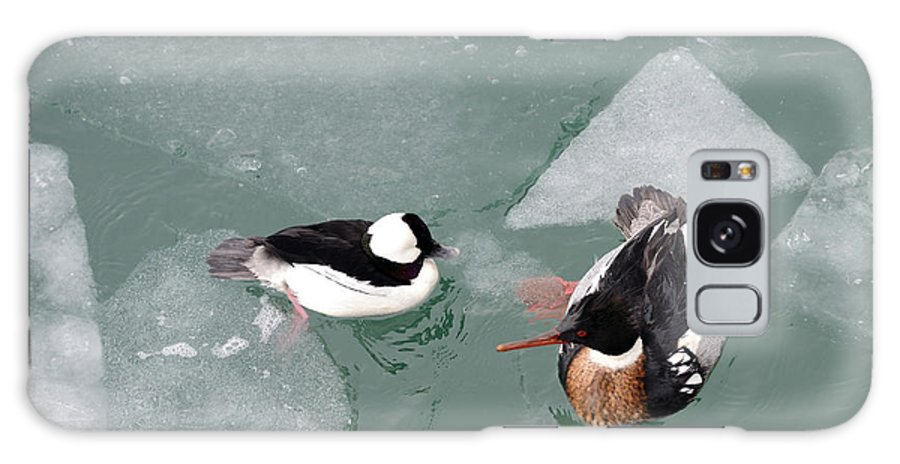 Bufflehead Galaxy S8 Case featuring the photograph Swimming With Ice by Ian Ashbaugh