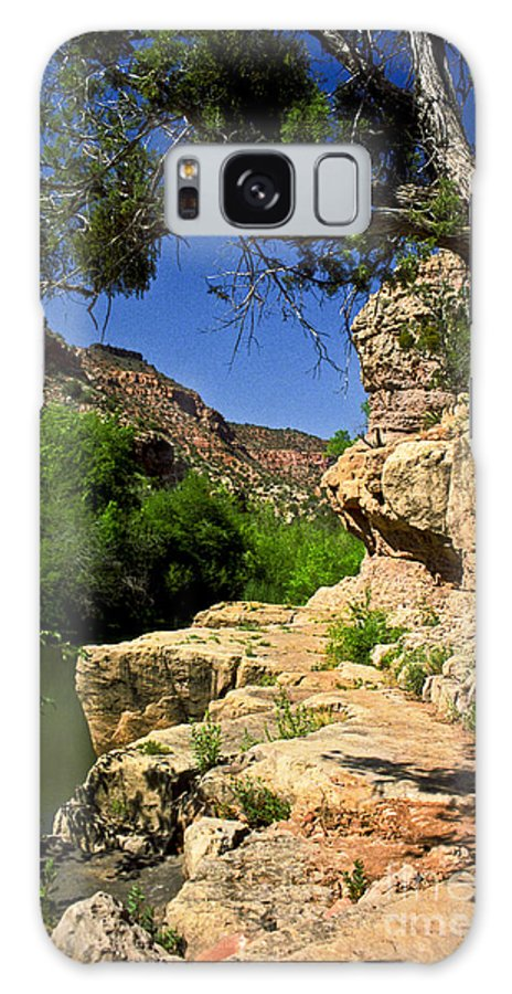 Arizona Galaxy Case featuring the photograph Sycamore Canyon by Kathy McClure