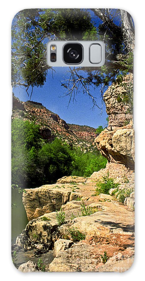 Arizona Galaxy S8 Case featuring the photograph Sycamore Canyon by Kathy McClure