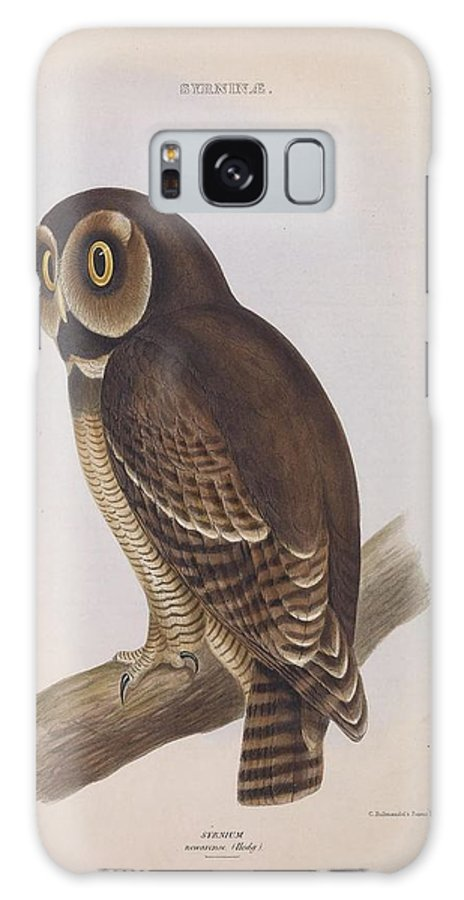 Audubon Galaxy S8 Case featuring the painting Syrnium Owl by Philip Ralley