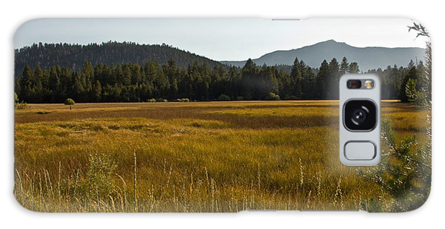 Randy Wehner Galaxy S8 Case featuring the photograph Tahoe Keys Meadow by Randy Wehner Photography