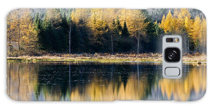 Fall Galaxy S8 Case featuring the photograph Tamarack Reflections by Alan L Graham