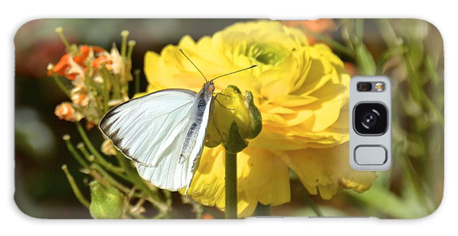 Butterfly Galaxy S8 Case featuring the photograph Taste Of Spring by Carol Bradley
