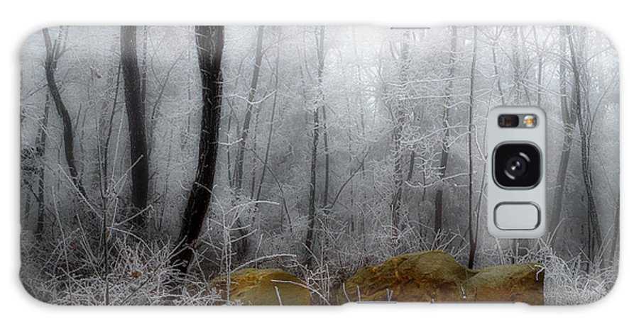 Landscape Frost Galaxy S8 Case featuring the photograph Tennessee Mountain Frost by Michael Eingle