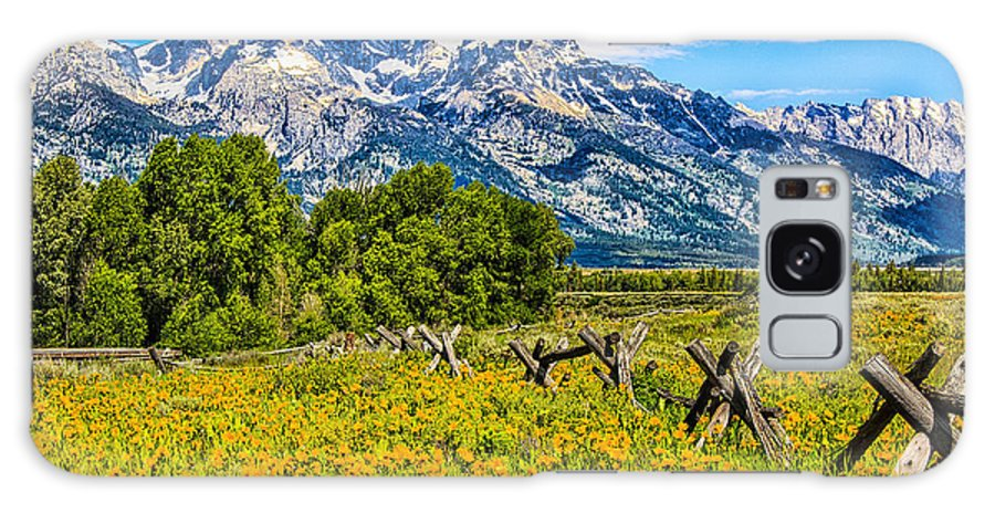 Places Galaxy S8 Case featuring the photograph Tetons In The Spring by Leon Roland