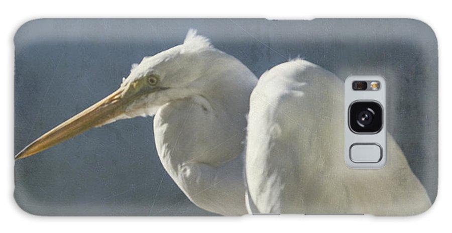 Bird Galaxy S8 Case featuring the photograph Textured Great Egret by Steve Gravano