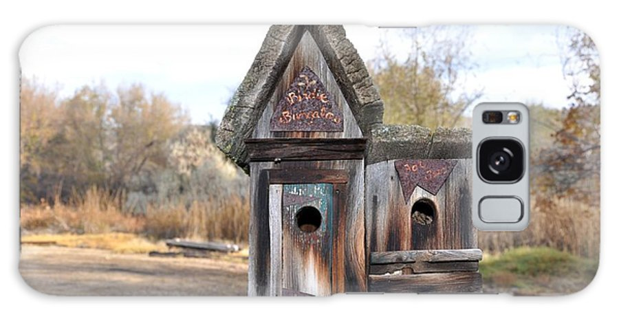 Melba; Idaho; Birdhouse; Shelter; Outdoor; Fall; Autumn; Leaves; Plant; Vegetation; Land; Landscape; Tree; Branch; House; Galaxy S8 Case featuring the photograph The Birdhouse Kingdom - Cedar Waxing by Image Takers Photography LLC - Carol Haddon