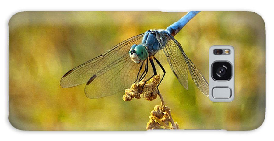 Blue Dragonfly Galaxy S8 Case featuring the photograph The Blue Dragonfly by Saija Lehtonen