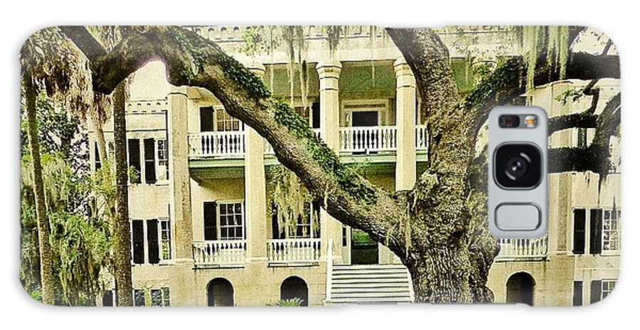 Oak Trees Galaxy S8 Case featuring the photograph The Cat Guarding The Castle by Patricia Greer