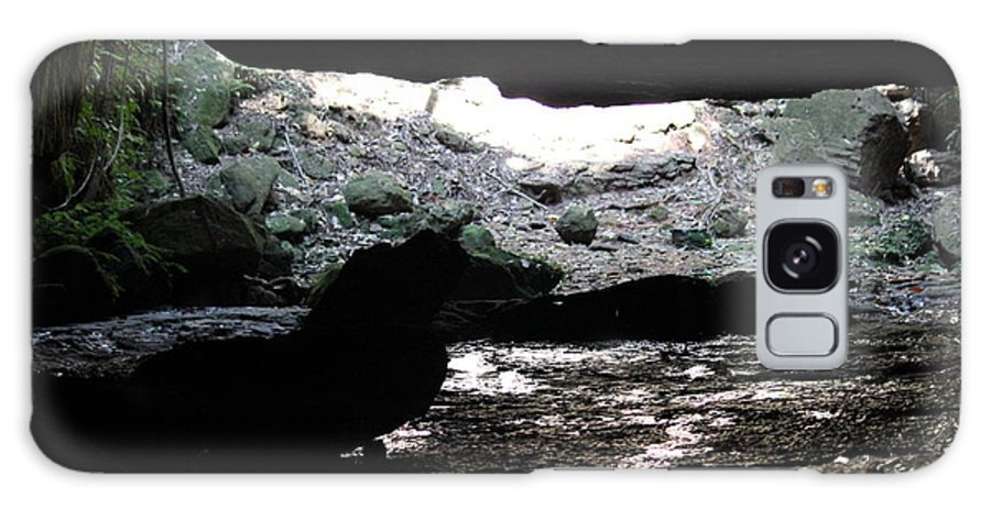 Nationalpark Galaxy S8 Case featuring the photograph The Cave Is Not Dry by Four Hands Art