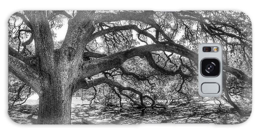 Tree Galaxy S8 Case featuring the photograph The Century Oak by Scott Norris