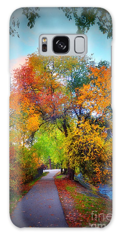 Autumn Galaxy S8 Case featuring the photograph The Changing Tree by Tara Turner